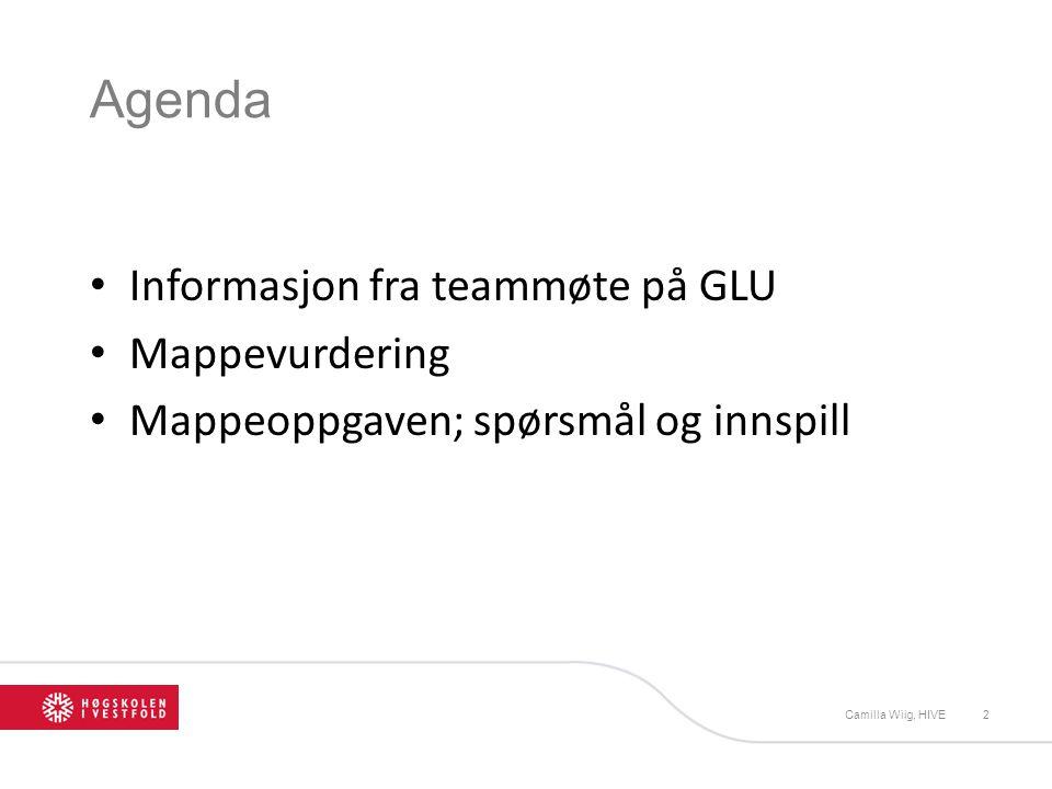 Agenda Informasjon fra teammøte på GLU Mappevurdering Mappeoppgaven; spørsmål og innspill Camilla Wiig, HIVE2