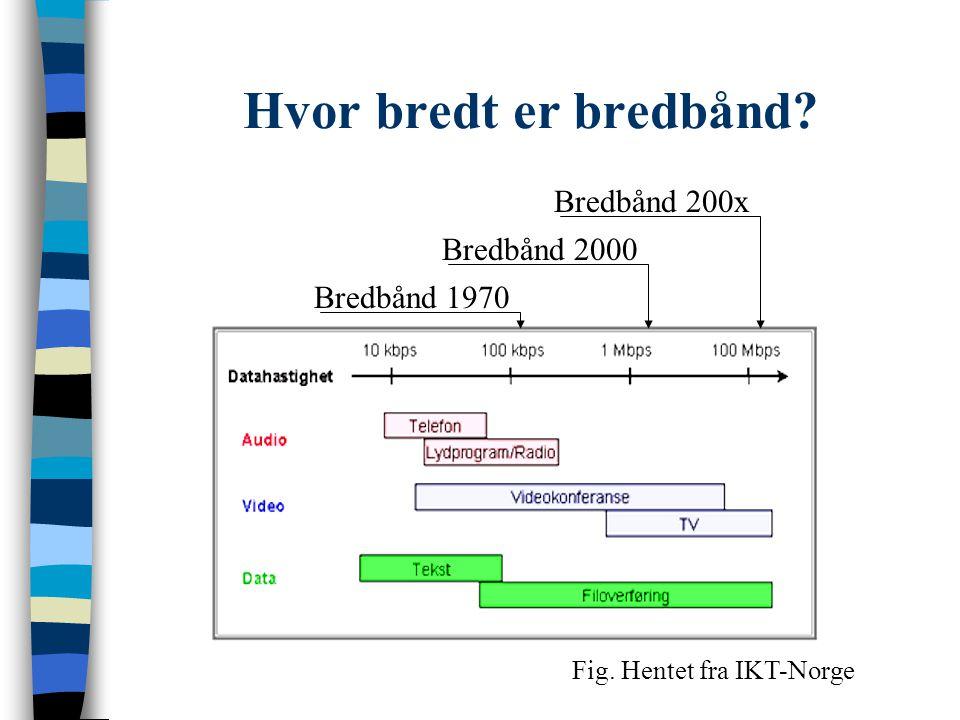 Hva kan bredbånd brukes til Informasjon e-handel Underholdninge-læring - Alltid pålogget - Griper inn i alle typer virksomhet - Presentasjon / Selvbetjening / Interaksjon Samarbeid....