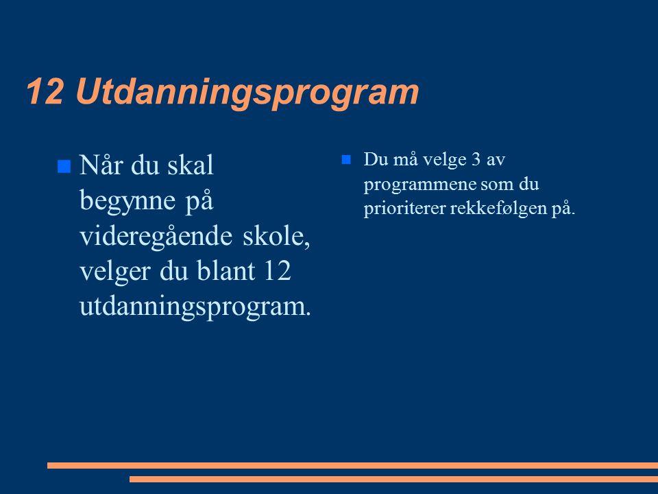 12 Utdanningsprogram Når du skal begynne på videregående skole, velger du blant 12 utdanningsprogram. Du må velge 3 av programmene som du prioriterer
