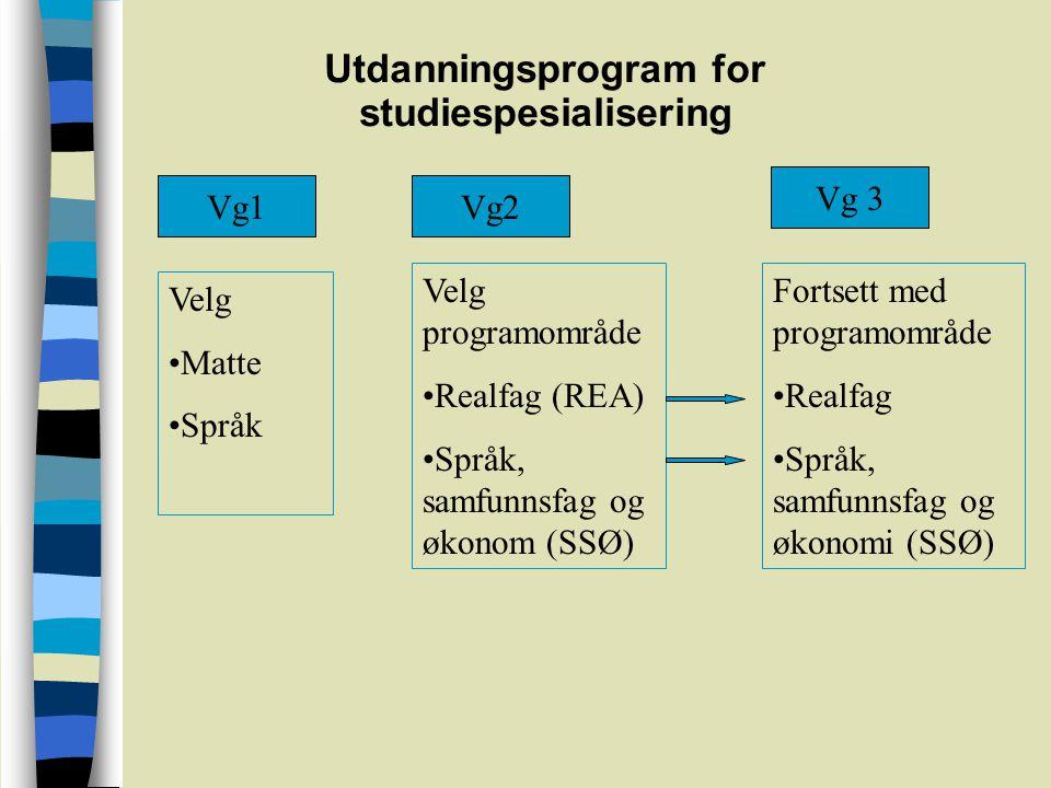 Utdanningsprogram for studiespesialisering Vg1Vg2 Vg 3 Velg Matte Språk Velg programområde Realfag (REA) Språk, samfunnsfag og økonom (SSØ) Fortsett med programområde Realfag Språk, samfunnsfag og økonomi (SSØ)