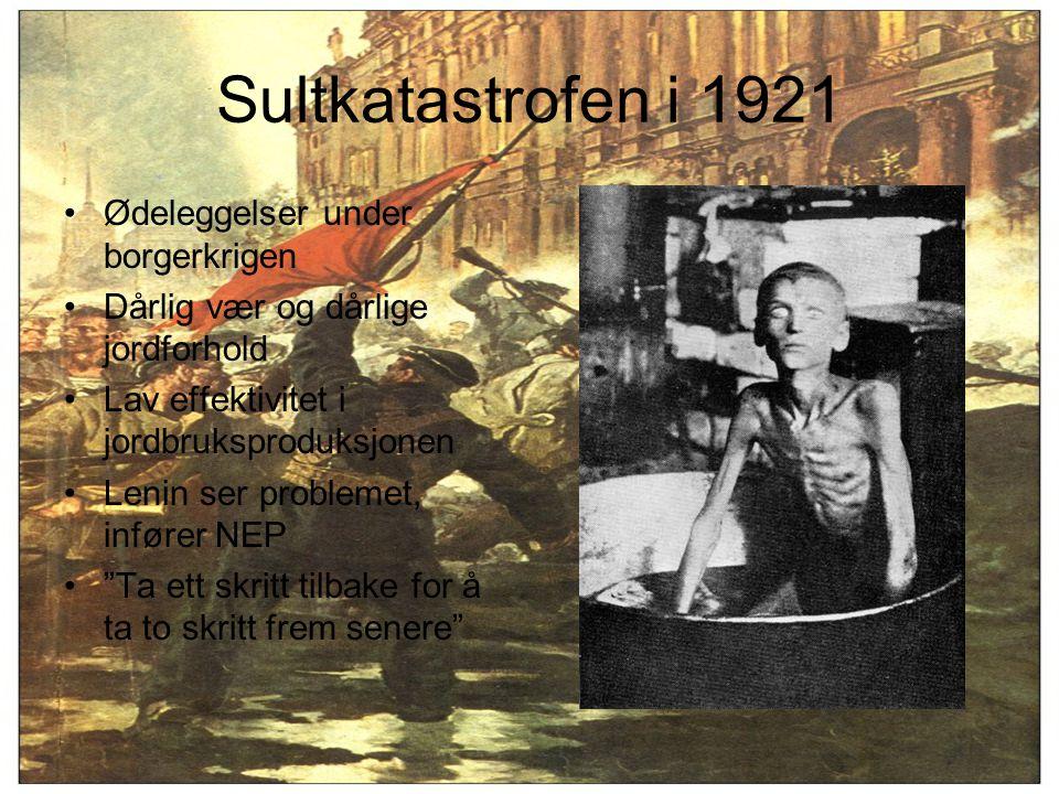 Sultkatastrofen i 1921 Ødeleggelser under borgerkrigen Dårlig vær og dårlige jordforhold Lav effektivitet i jordbruksproduksjonen Lenin ser problemet,