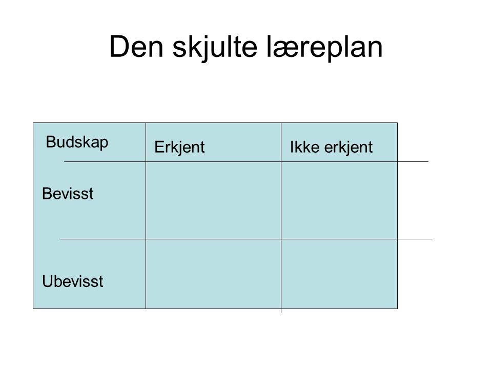 Didaktisk relasjonsmodell - didaktiske kategorier Elevforut- setninger Rammer Lærings- aktivitet Innhold Vurderings- form Mål