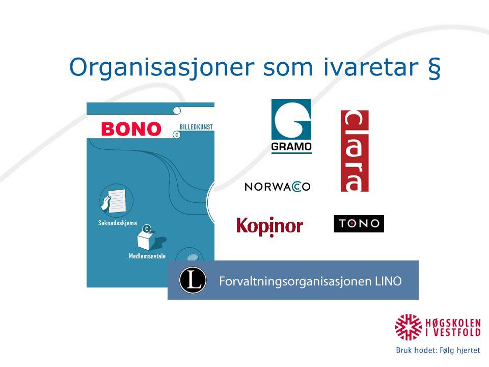Organisasjoner som ivaretar §