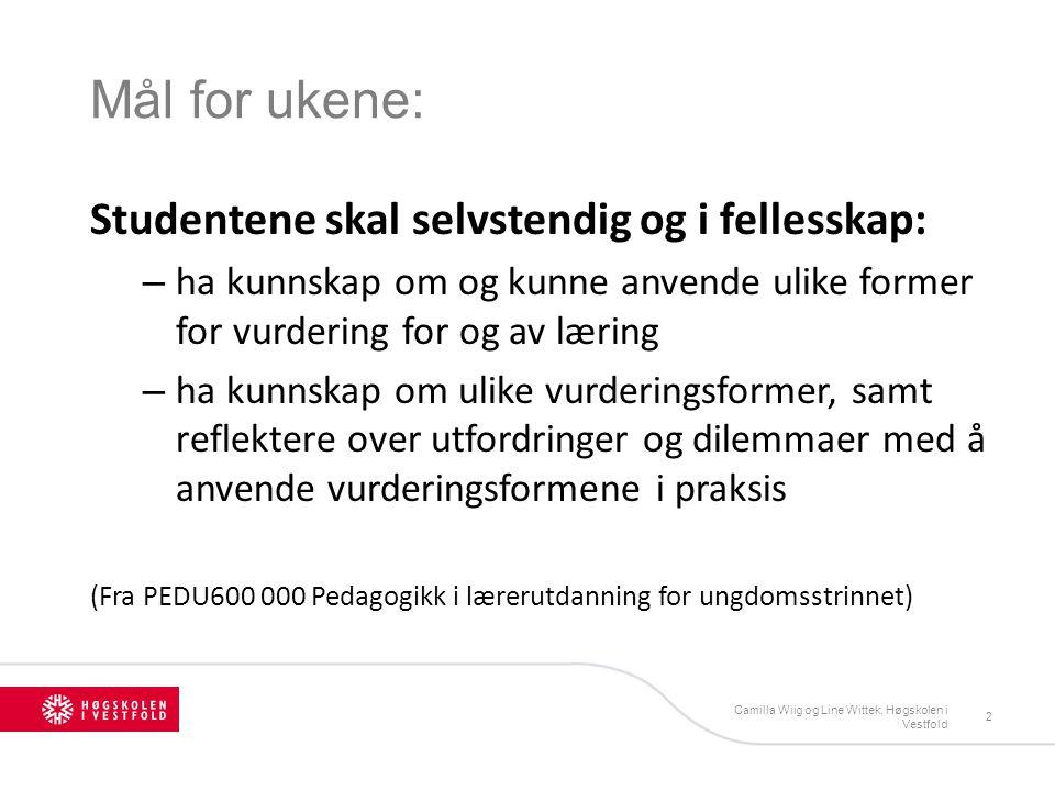 Betingelser for excellence (Cross 1996) Camilla Wiig og Line Wittek, Høgskolen i Vestfold 23 1.Høye forventninger 2.Student- / elevmedvirkning og - engasjement 3.Underveis vurdering og tilbakemelding (Punkt 3: svakest forankret i vårt utdanningssystem)