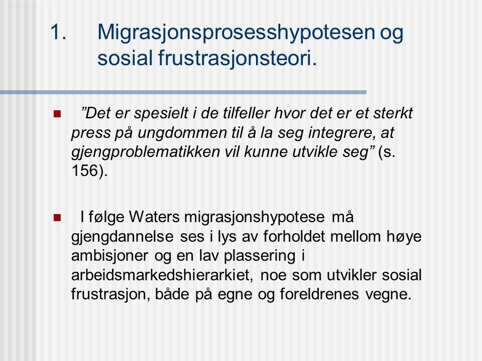 1.Migrasjonsprosesshypotesen og sosial frustrasjonsteori.