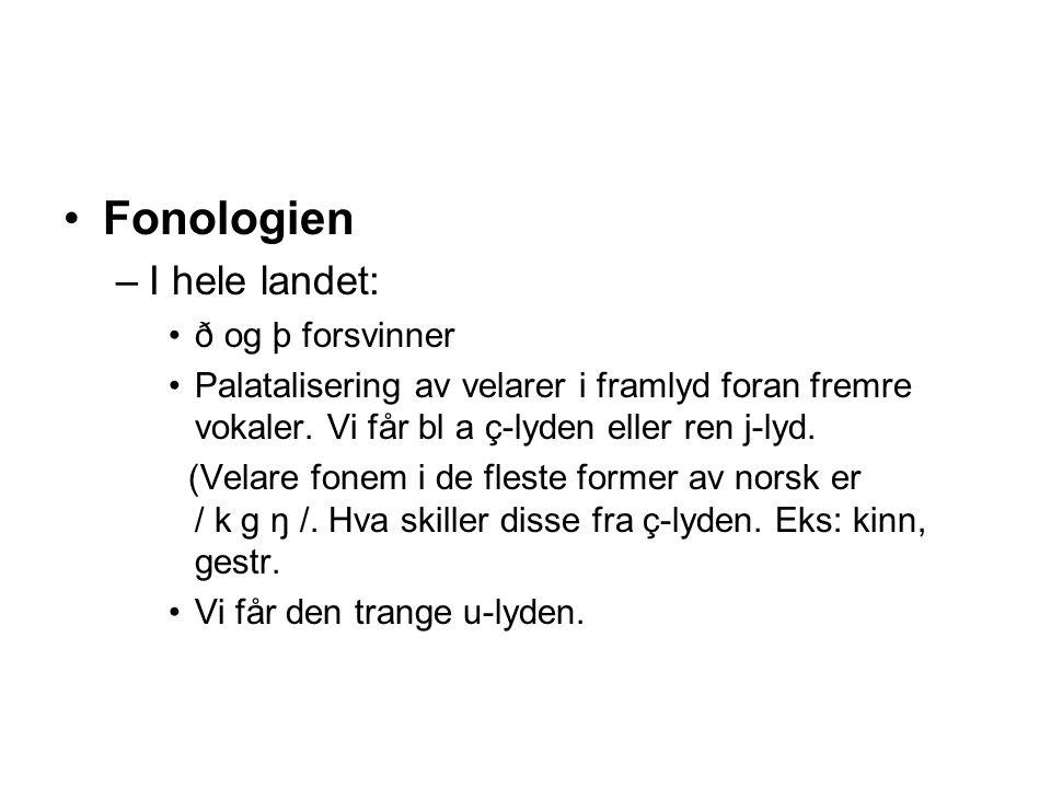 Fonologien –I hele landet: ð og þ forsvinner Palatalisering av velarer i framlyd foran fremre vokaler. Vi får bl a ç-lyden eller ren j-lyd. (Velare fo