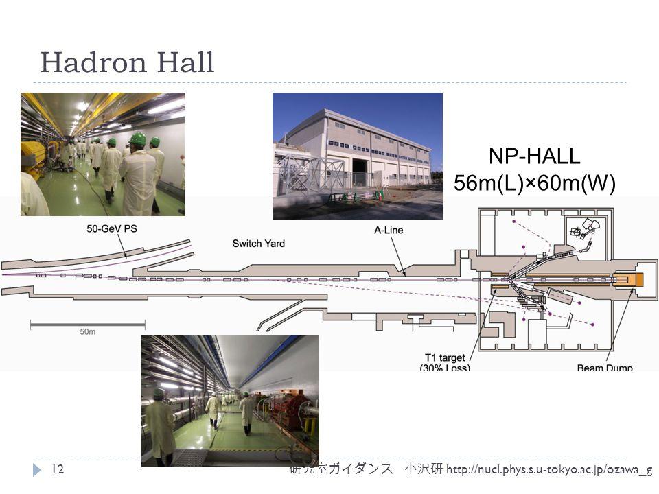 Hadron Hall 研究室ガイダンス 小沢研 http://nucl.phys.s.u-tokyo.ac.jp/ozawa_g 12 NP-HALL 56m(L)×60m(W)
