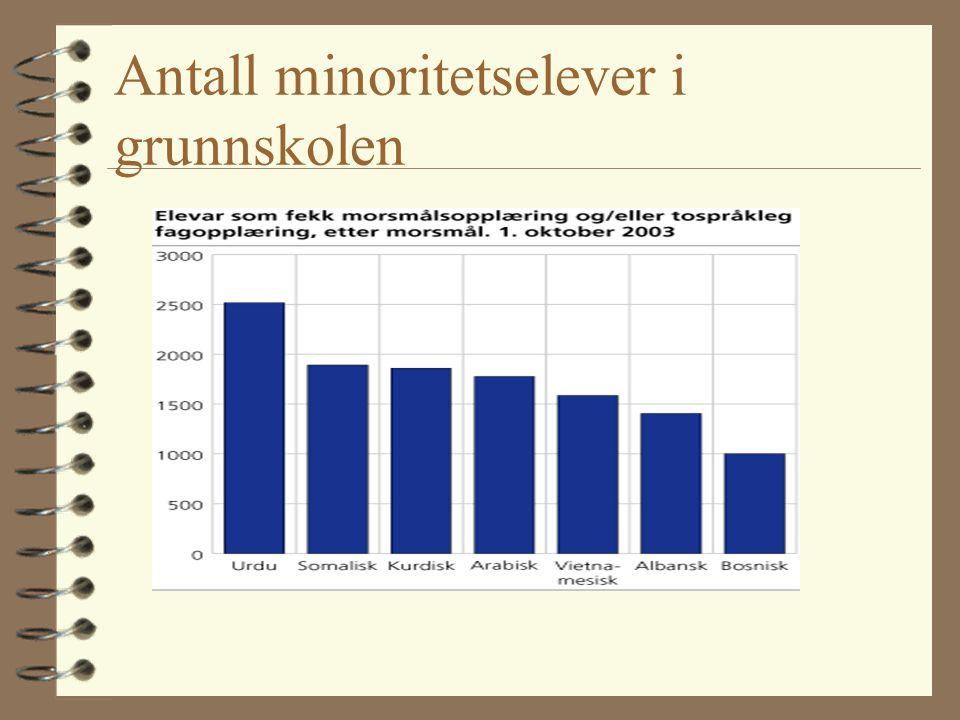 Antall minoritetselever i grunnskolen (1998) Landsgjennomsnitt:6,9% Vestfold: 4,0 % Oslo:27,7% 4 Dette er en uensartet gruppe - og definisjonen av min