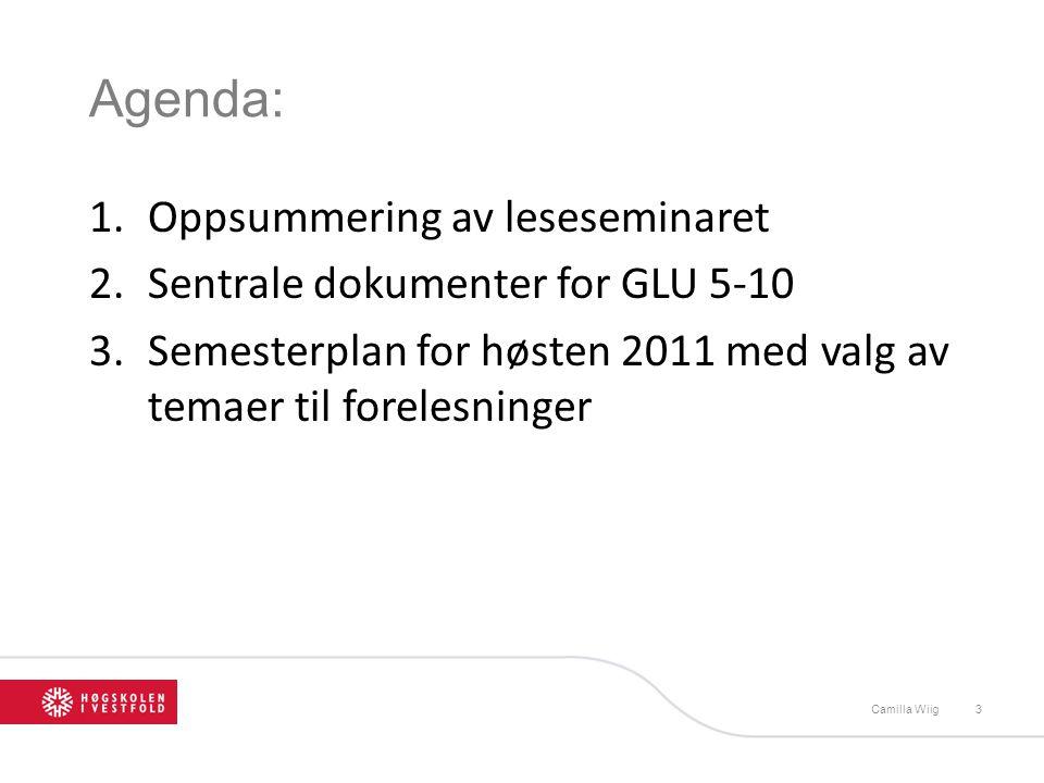 Agenda: 1.Oppsummering av leseseminaret 2.Sentrale dokumenter for GLU 5-10 3.Semesterplan for høsten 2011 med valg av temaer til forelesninger Camilla