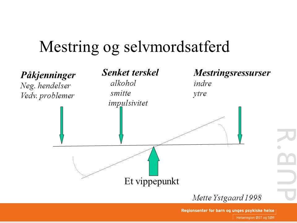 Mestringsressurser indre ytre Påkjenninger Neg. hendelser Vedv.