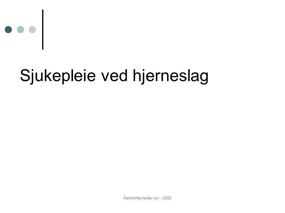 Åshild Havnerås nov.- 2005 Sjukepleie ved hjerneslag