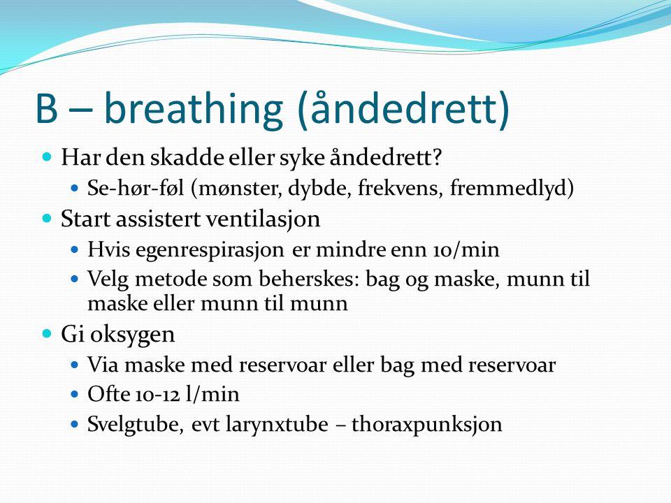 B – breathing (åndedrett) Har den skadde eller syke åndedrett.