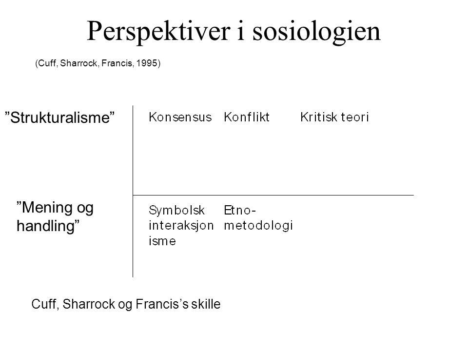 Perspektiver i sosiologien (Cuff, Sharrock, Francis, 1995) Strukturalisme Mening og handling Cuff, Sharrock og Francis's skille