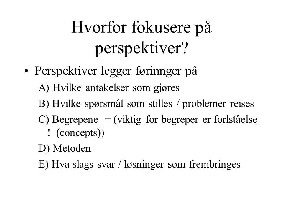 Hvorfor fokusere på perspektiver.