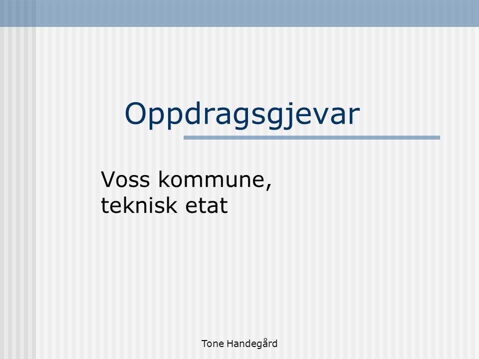 Tone Handegård Oppdragsgjevar Voss kommune, teknisk etat