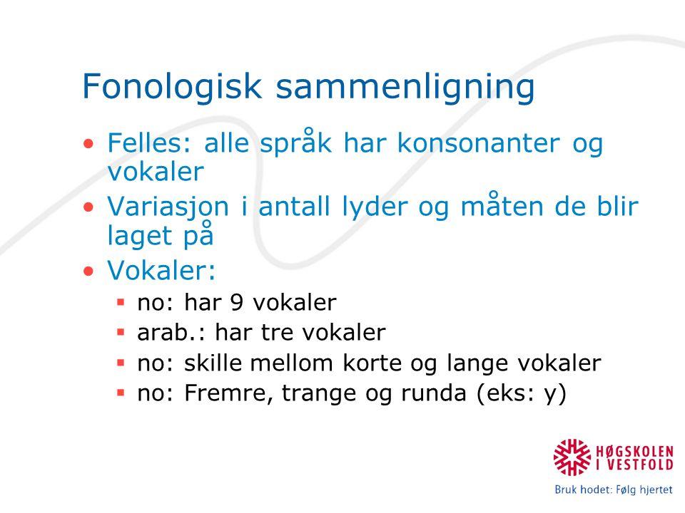 Fonologisk sammenligning Felles: alle språk har konsonanter og vokaler Variasjon i antall lyder og måten de blir laget på Vokaler:  no: har 9 vokaler