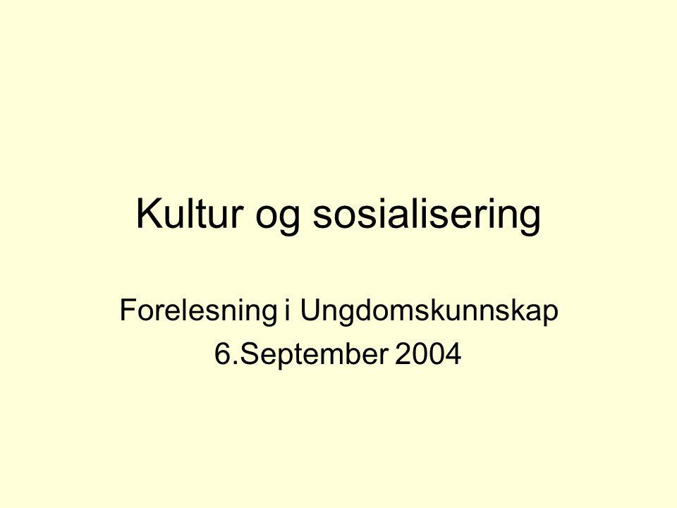 Kultur og sosialisering Forelesning i Ungdomskunnskap 6.September 2004