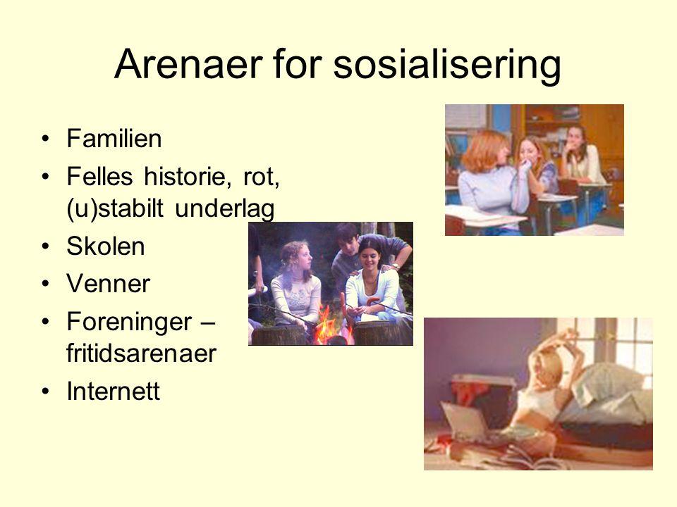 Arenaer for sosialisering Familien Felles historie, rot, (u)stabilt underlag Skolen Venner Foreninger – fritidsarenaer Internett
