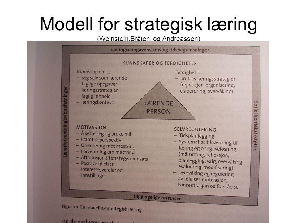 Modell for strategisk læring (Weinstein,Bråten, og Andreassen)