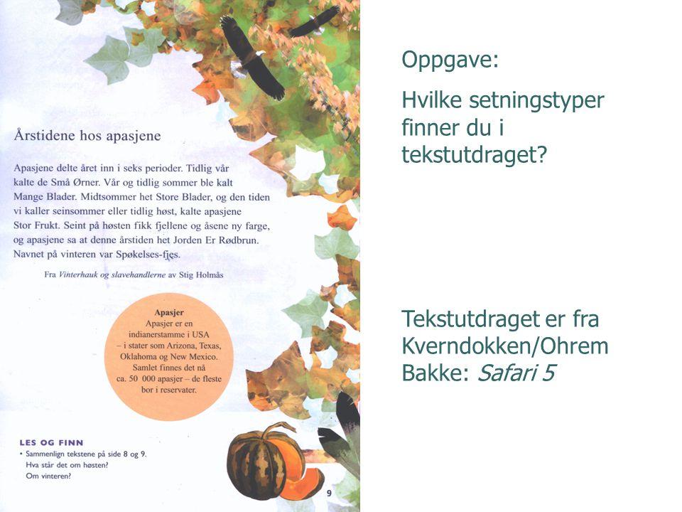 Oppgave: Hvilke setningstyper finner du i tekstutdraget? Tekstutdraget er fra Kverndokken/Ohrem Bakke: Safari 5