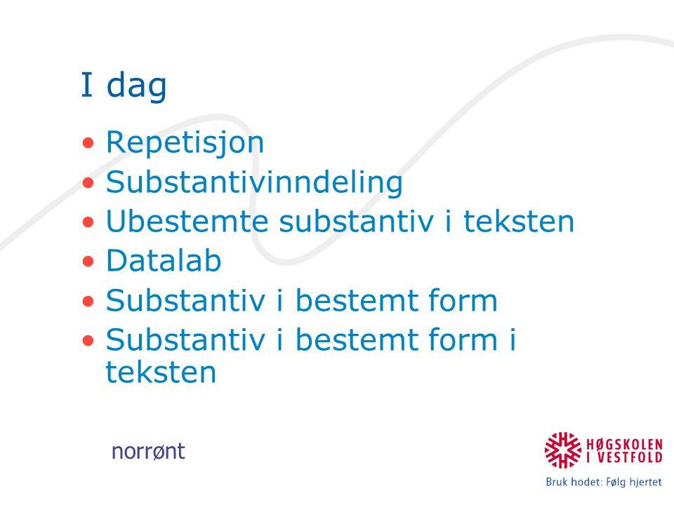 norrønt I dag Repetisjon Substantivinndeling Ubestemte substantiv i teksten Datalab Substantiv i bestemt form Substantiv i bestemt form i teksten
