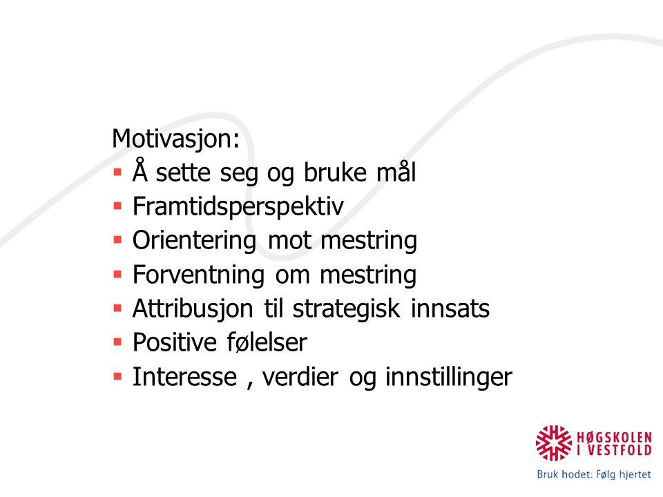 Motivasjon:  Å sette seg og bruke mål  Framtidsperspektiv  Orientering mot mestring  Forventning om mestring  Attribusjon til strategisk innsats
