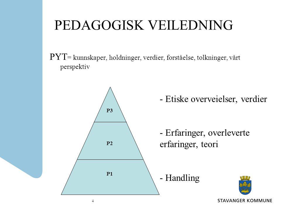4 PEDAGOGISK VEILEDNING PYT = kunnskaper, holdninger, verdier, forståelse, tolkninger, vårt perspektiv P3 P2 P1 - Etiske overveielser, verdier - Erfar