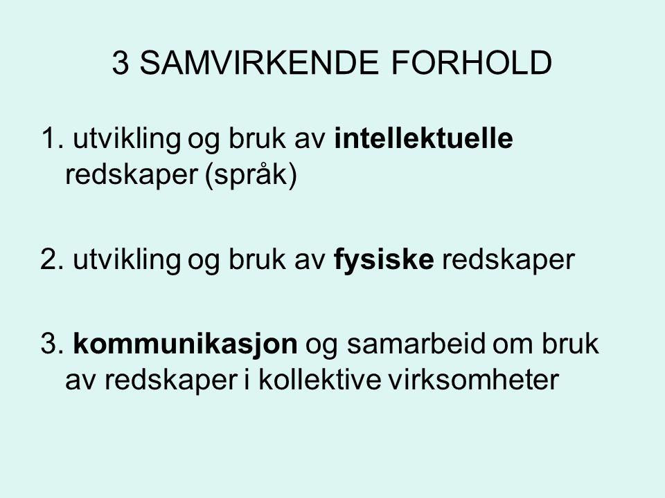3 SAMVIRKENDE FORHOLD 1.utvikling og bruk av intellektuelle redskaper (språk) 2.