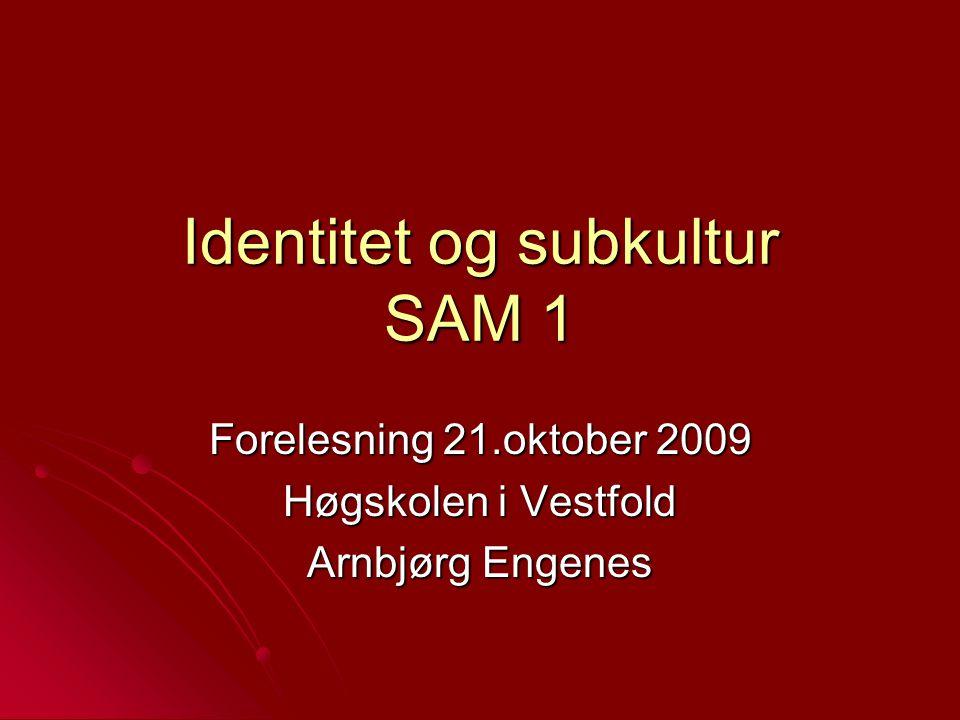 Identitet og subkultur SAM 1 Forelesning 21.oktober 2009 Høgskolen i Vestfold Arnbjørg Engenes