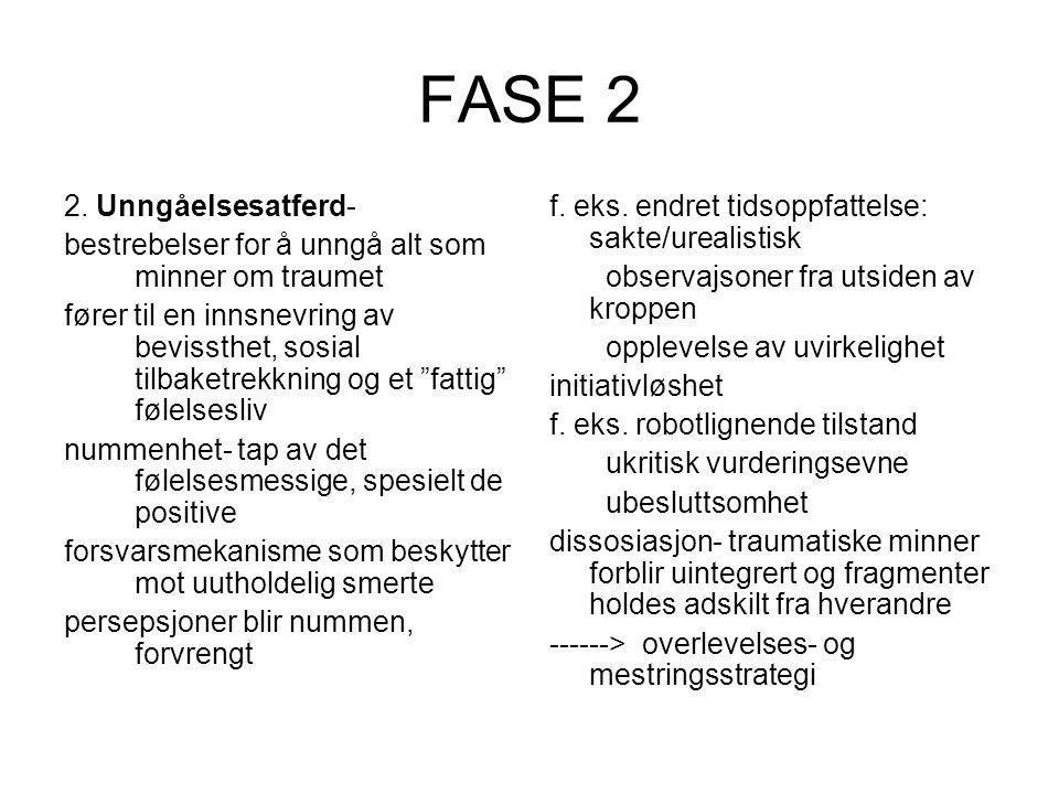 FASE 2 2.