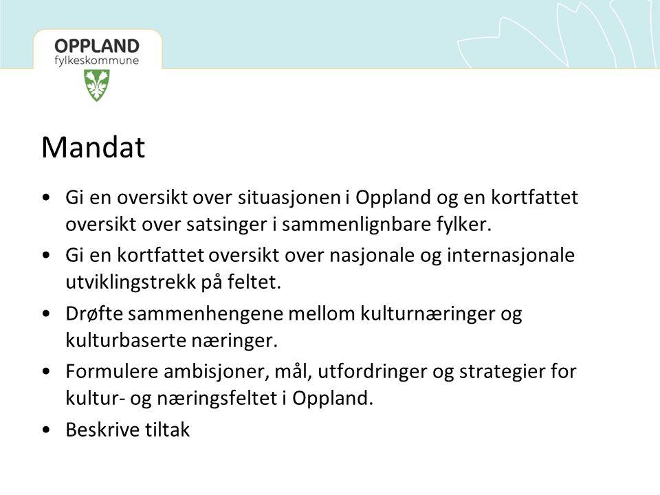Mandat Gi en oversikt over situasjonen i Oppland og en kortfattet oversikt over satsinger i sammenlignbare fylker.