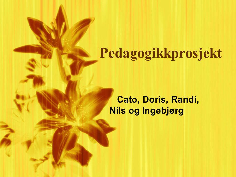 Pedagogikkprosjekt Cato, Doris, Randi, Nils og Ingebjørg