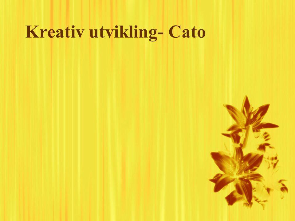 Kreativ utvikling- Cato