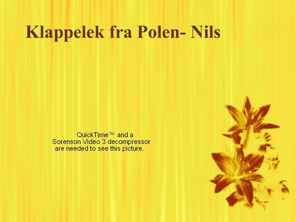 Klappelek fra Polen- Nils