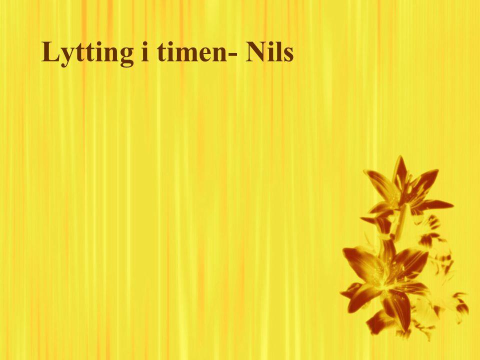 Lytting i timen- Nils