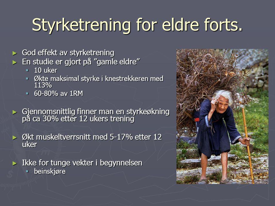 """Styrketrening for eldre forts. ► God effekt av styrketrening ► En studie er gjort på """"gamle eldre""""  10 uker  Økte maksimal styrke i knestrekkeren me"""
