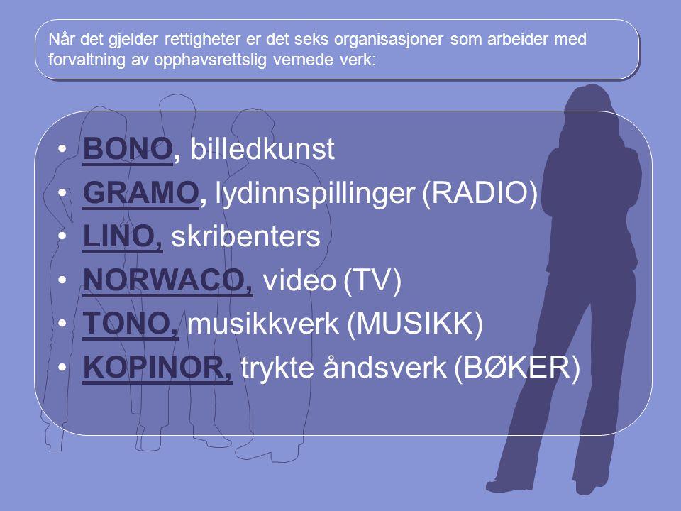 Når det gjelder rettigheter er det seks organisasjoner som arbeider med forvaltning av opphavsrettslig vernede verk: BONO, billedkunstBONO GRAMO, lydi