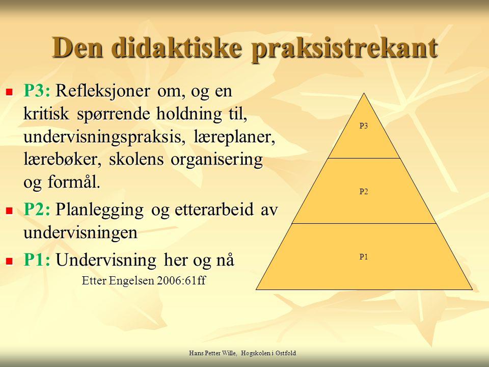 Hans Petter Wille, Høgskolen i Østfold P3: Refleksjoner om, og en kritisk spørrende holdning til, undervisningspraksis, læreplaner, lærebøker, skolens organisering og formål.