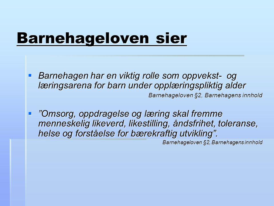 Litteraturliste: Dysthe, O (red)(2001) Dialog, samspell og læring, Oslo Abstrakt forlag Lave og Wenger ( 2003) Situeret læring Pramling Samuelsson og Carlsson(2003) Det lekande lärande barnet i en utvecklingspedagogisk teori Stålsett, Sandal og Tveten (1991) Veilednings- metodikk Säljö, R.