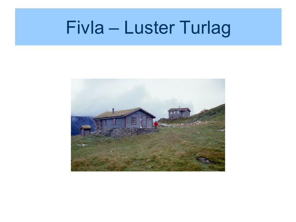 Fivla – Luster Turlag
