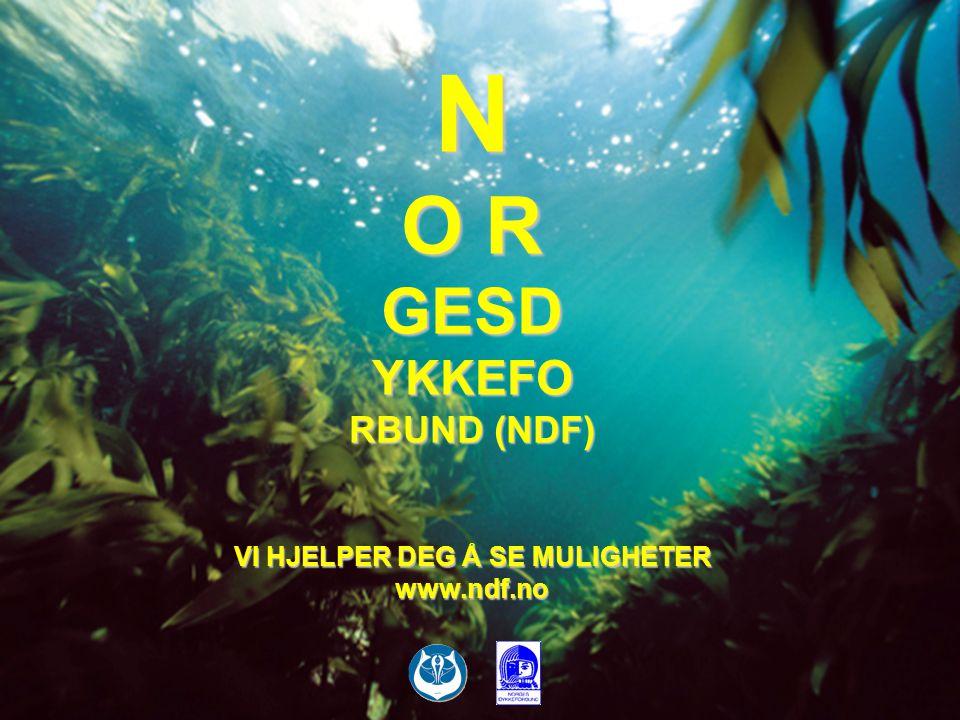 N O R GESD YKKEFO RBUND (NDF) VI HJELPER DEG Å SE MULIGHETER www.ndf.no