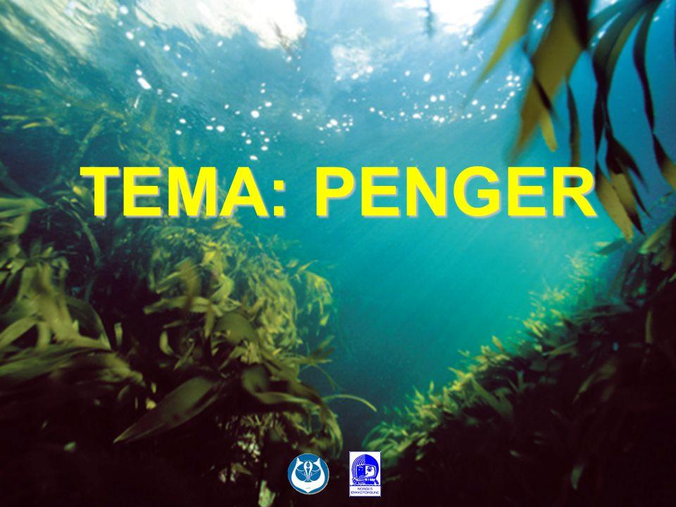TEMA: PENGER