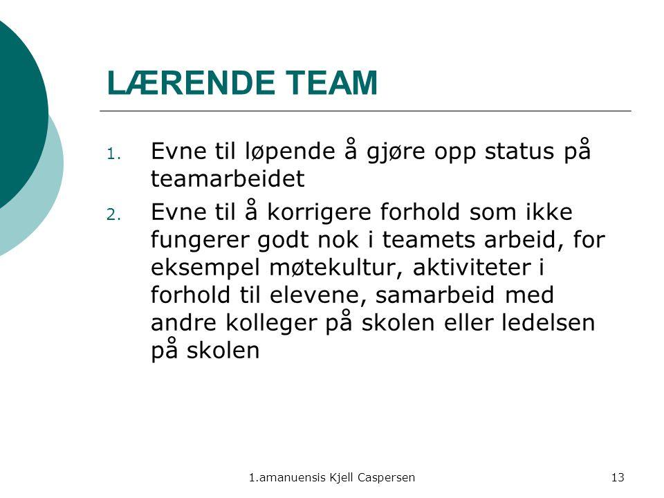 1.amanuensis Kjell Caspersen13 LÆRENDE TEAM 1. Evne til løpende å gjøre opp status på teamarbeidet 2. Evne til å korrigere forhold som ikke fungerer g