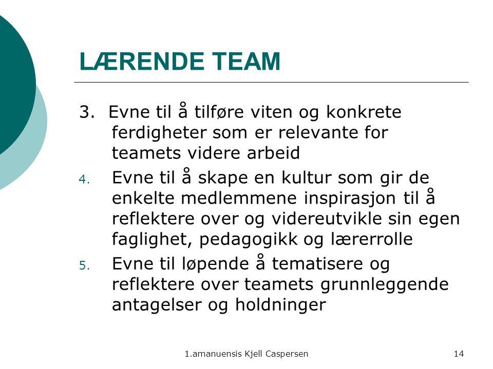 1.amanuensis Kjell Caspersen14 LÆRENDE TEAM 3. Evne til å tilføre viten og konkrete ferdigheter som er relevante for teamets videre arbeid 4. Evne til