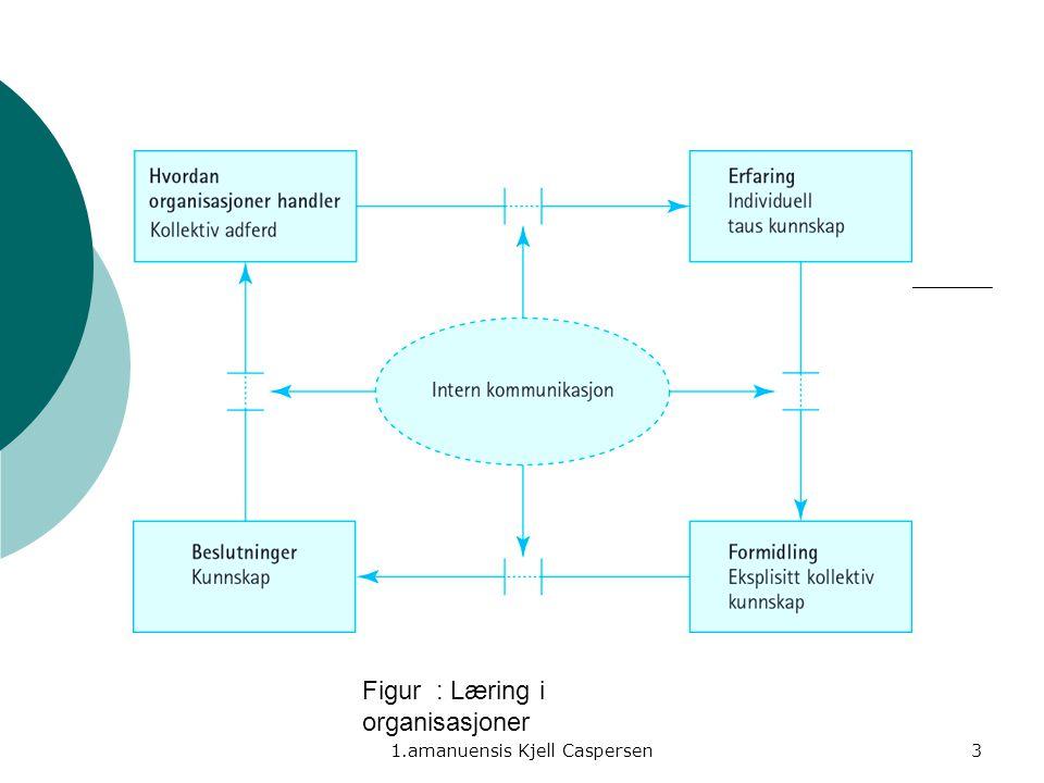 1.amanuensis Kjell Caspersen3 Figur : Læring i organisasjoner