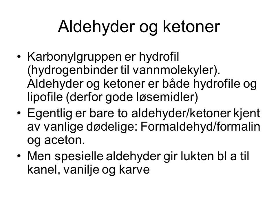 Aldehyder og ketoner Karbonylgruppen er hydrofil (hydrogenbinder til vannmolekyler). Aldehyder og ketoner er både hydrofile og lipofile (derfor gode l