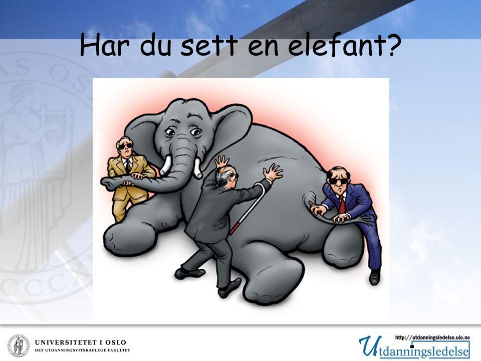 Har du sett en elefant