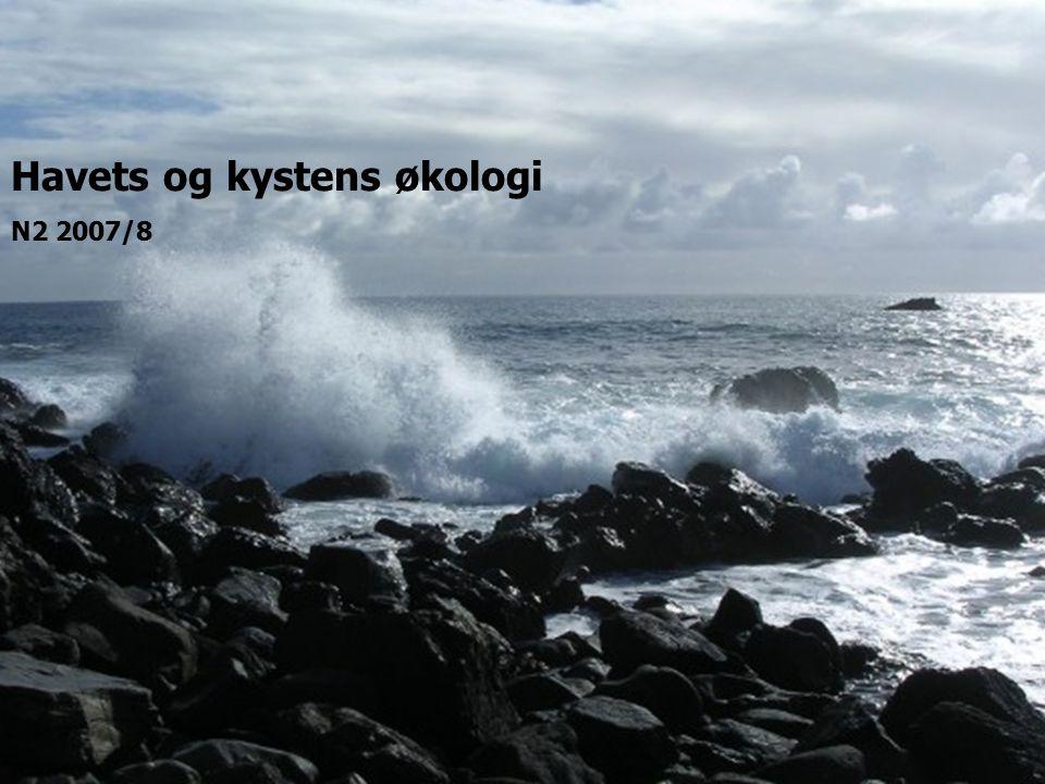 Havets og kystens økologi N2 2007/8