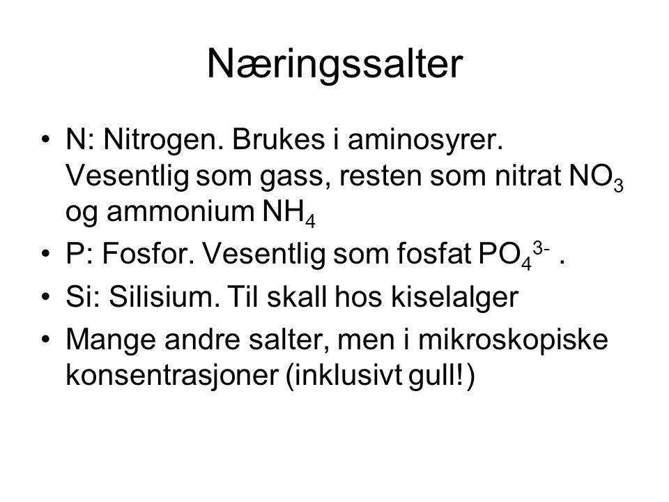 Næringssalter N: Nitrogen. Brukes i aminosyrer. Vesentlig som gass, resten som nitrat NO 3 og ammonium NH 4 P: Fosfor. Vesentlig som fosfat PO 4 3-. S