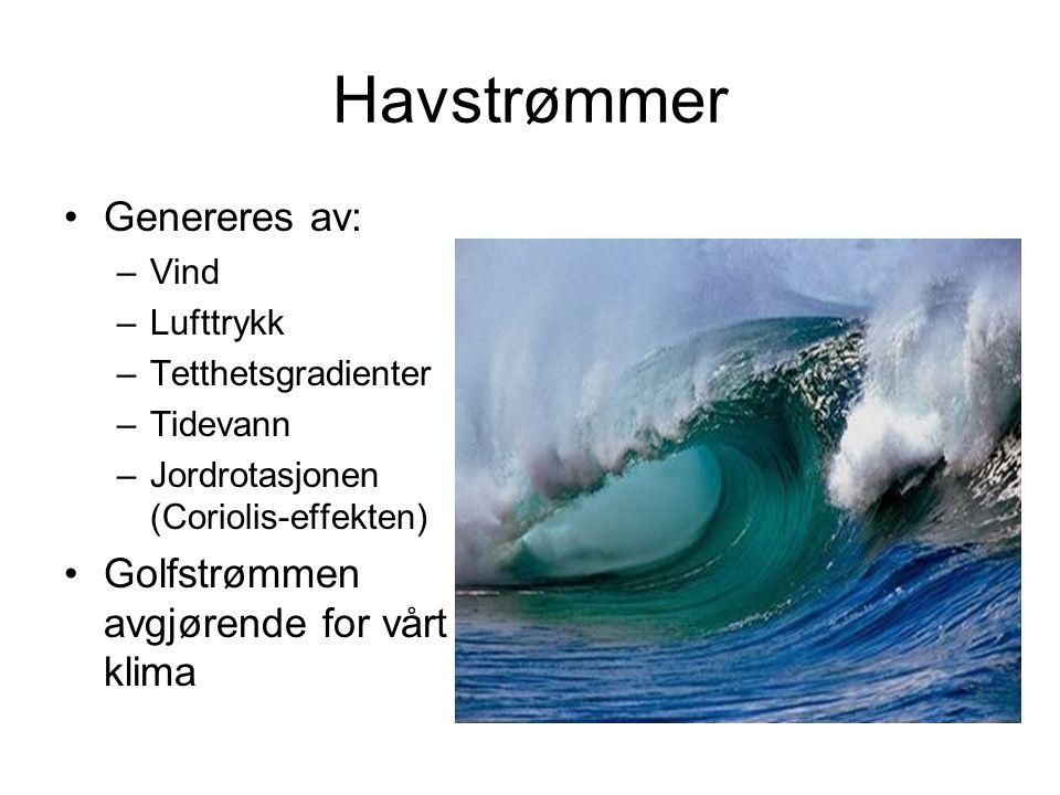 Havstrømmer Genereres av: –Vind –Lufttrykk –Tetthetsgradienter –Tidevann –Jordrotasjonen (Coriolis-effekten) Golfstrømmen avgjørende for vårt klima
